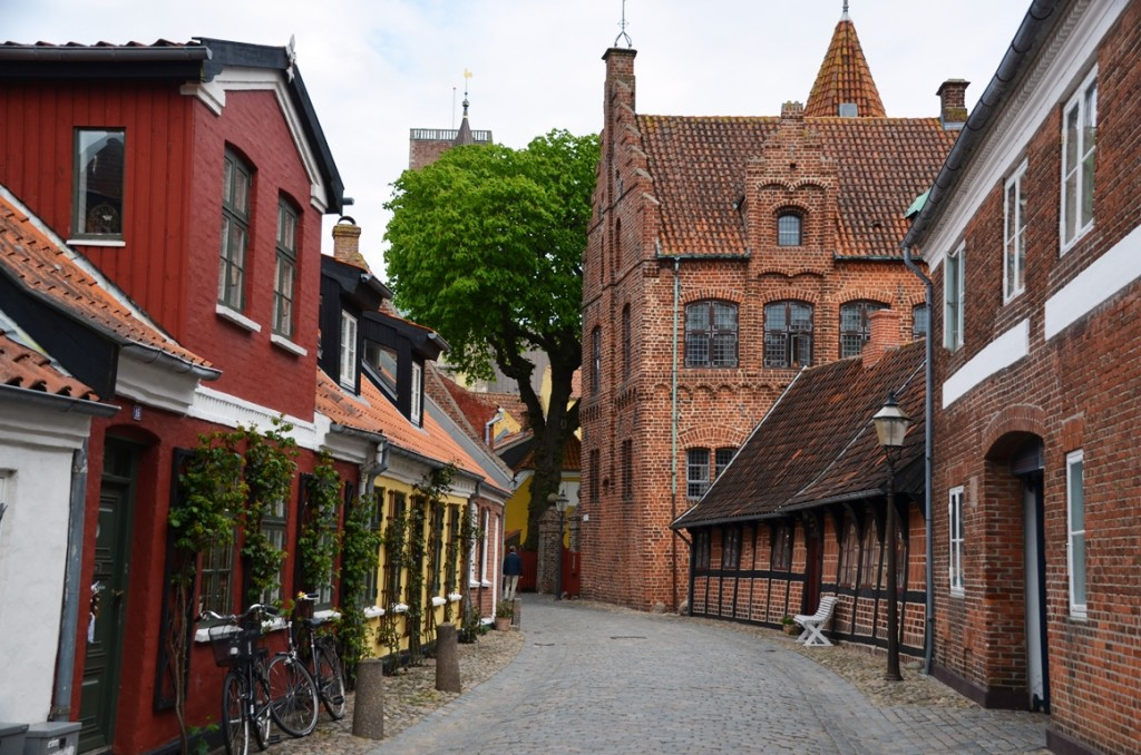 Tarnborg (de Torenburcht) in Ribe