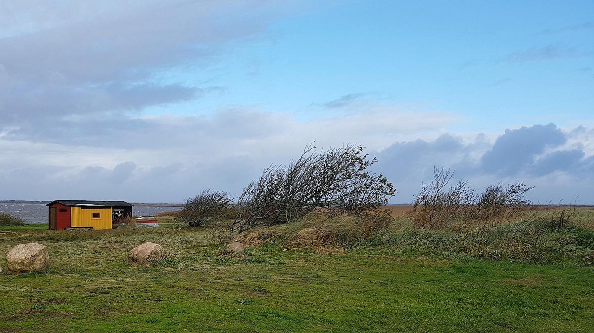 Skaven Strand in Denemarken